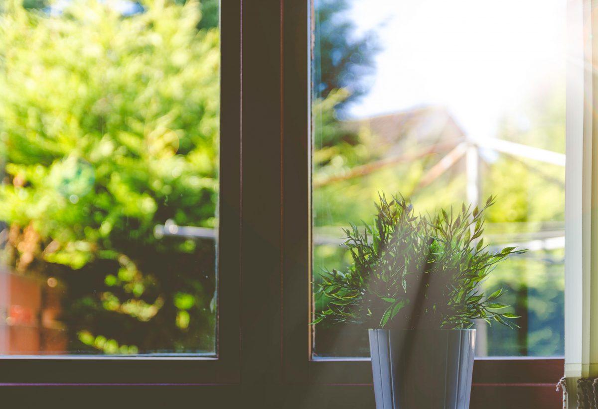 natural light in garden cabins
