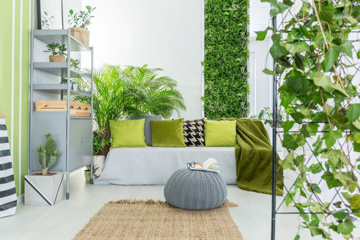 How Garden Cabins Make a Perfect Productivity-Boosting Workplace